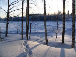 Tammikuu2010 277